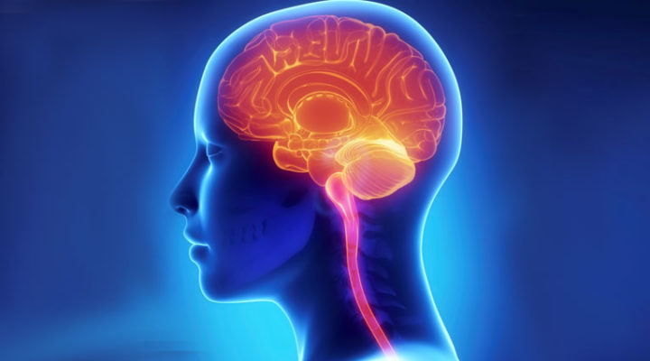 High homocysteine – it can affect your brain, your heart and your