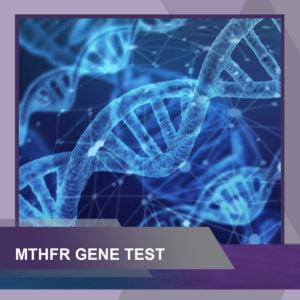 Methylation Panel - MTHFR Gene Support